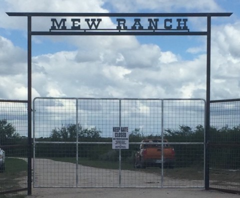 Mew Ranch - South Texas Hunting Ranch