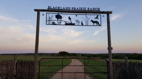 BlackLand_Prairie_Ranch